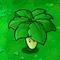 Umbrella Leaf