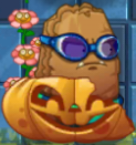 Pumpkin first degrade PvZ2