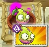 Imp Pear with Boost Packet