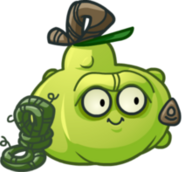 Security Gourd small