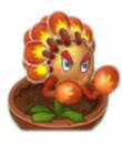 Flor Boxeadora en una maceta