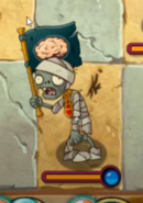 Flag Mummy In Game