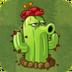 CactusAS