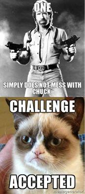 Chuck vs. Grumpy