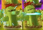 Shooting PF cactus