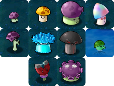 The Ten Mushrooms