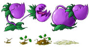 Chomper-and-potato-concepts..