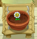 Growing Marigold PvZ2