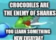 SharkvsCrocodileLogic