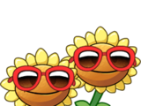 Sunflower line