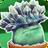 Ice-shroomGW2