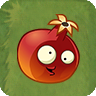 Pomegranada2