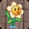 NarcissusO