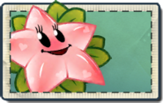 Pinkstarfruit Seed Packet