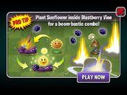 Pro Tip Blastberry Vine