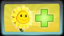 Sun Heals Xbox