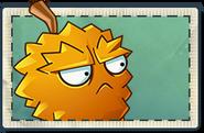 Endurian Seed Packet (PvZ 2)