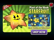 StarfruitPlantoftheWeek