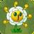 Golden ChrysanthemumAS
