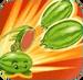 Watermelon line Ability1