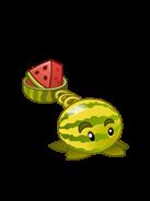 Junior Melon Pult