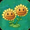 Twin SunflowerO