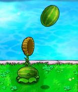 MelonThrow