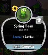 Springbeandesc