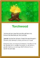 Torch Online