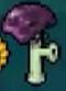 DS Scaredy-shroom