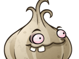 Garlic (PvZH)