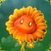Fire FlowerGW2
