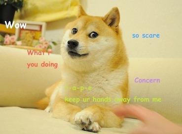 File:Original Doge meme.jpg