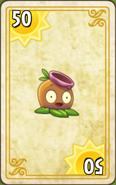 Gumnut Endless Zone Card Level 10