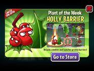 HollyBarrierPlantoftheWeek