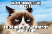 Interesting-profilepicture-i
