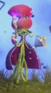 Rosa gaafaas