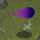 Unpowered Shadow Peashooter Projectile