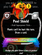Peel Shield statistics