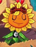Solar Flare blinking