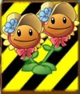 EndangeredTwinSunflower