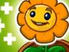 Uzdrawiający kwiatZ GW2