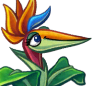 Bird of Paradise cardface