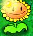 Sunflower Producing Sun2