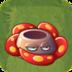 RafflesiaAS