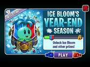 Ice Bloom's Year-End Season