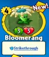 Receiving Bloomerang