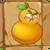 Fire Gourd2