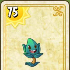 Thẻ bài trong <a href=