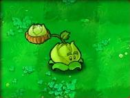 Cabbage-pult-Almanac